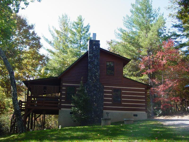 Mountain Laurel - Fall Foliage