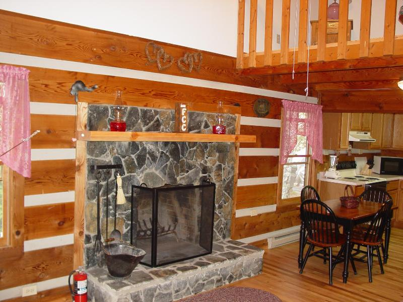 Living Room Stone Fireplace View