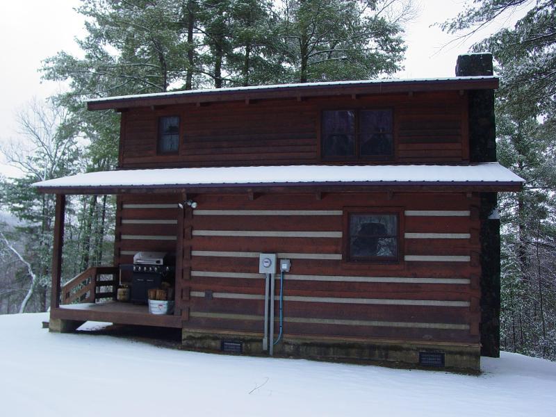Serenity Ridge Cabin - January 2011 Snow