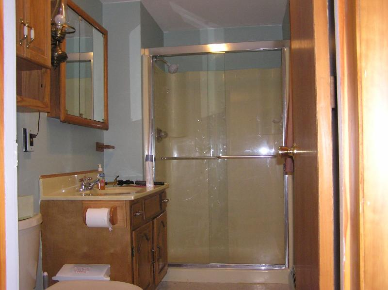 The Master Bath With Shower.