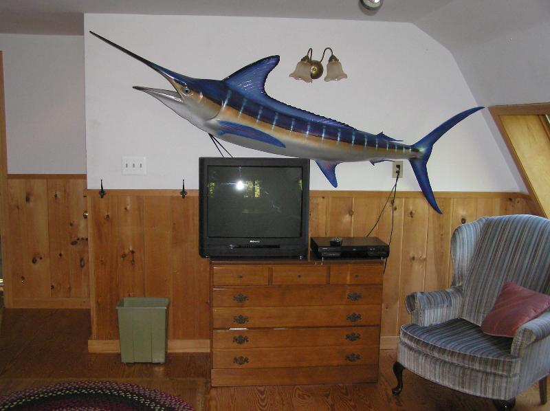 Cable TV/DVD Too.  Don't Worry.  That Striped Marlin Was Caught In Mexico.