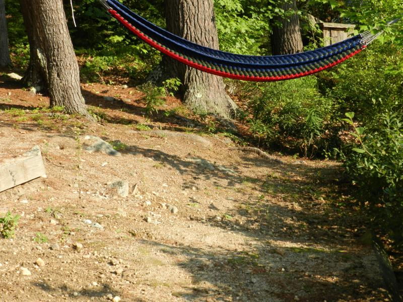Hammock to take a nap in the shade.