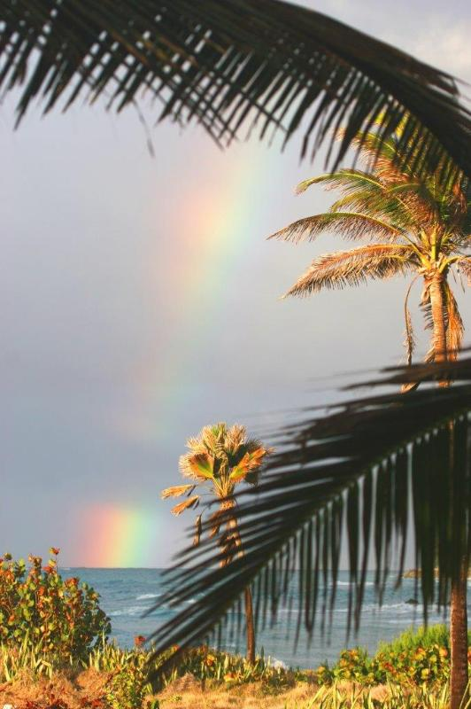 Rainbow at Seascape Beach House