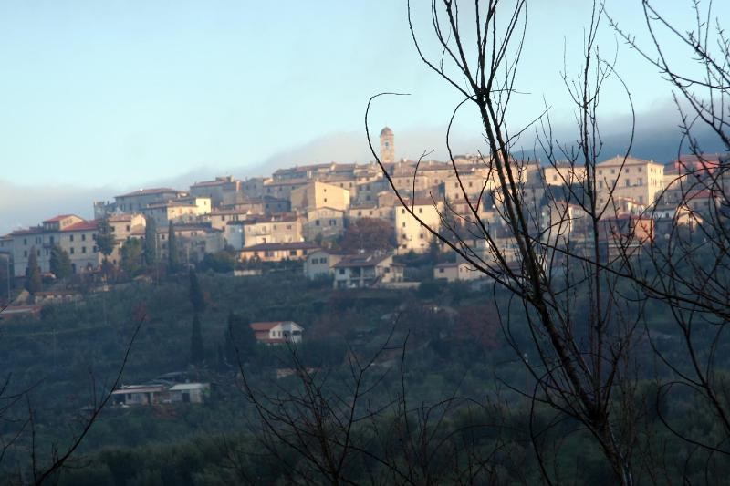Montecchio the village in hazy winter air
