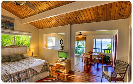 Newly Renovated Bedroom with ocean view and private bath.