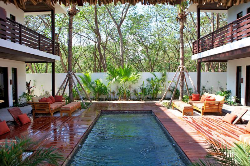 Jungle for neighbors