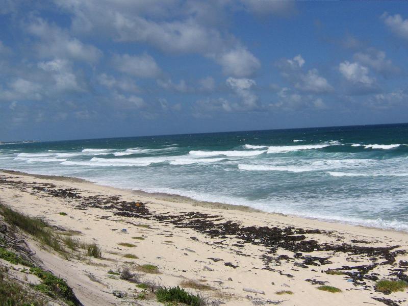 Curta distância a pé da praia do oceano