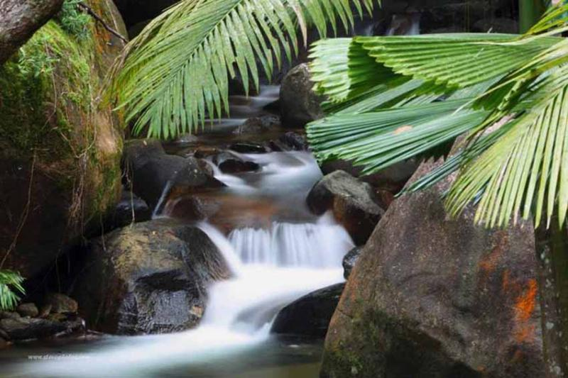 Private waterfalls spilling into your natural swimming pool. Swim under for a shoulder massage.