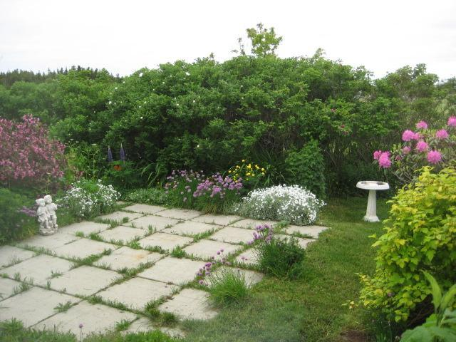 backyard patio smells of rugosa roses, wegelea bushes ,Rhodos and perinieals. Made for relaxing