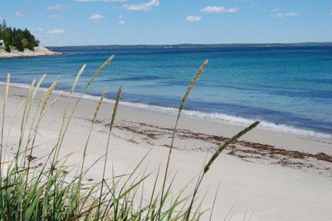 Queensland Beach just across the road