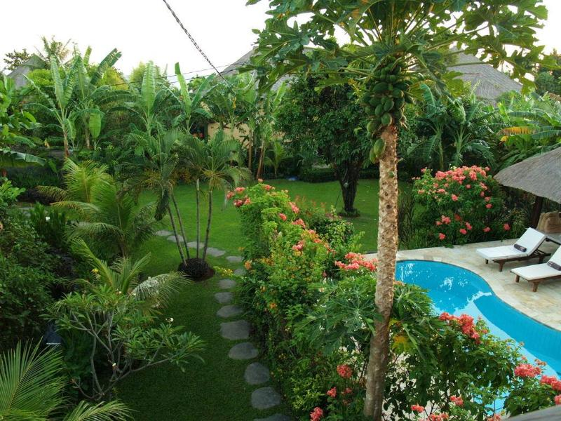 garden view from the veranda