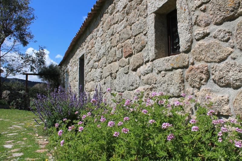 B&B Stazzo Chivoni. Lost in the Nature, holiday rental in Bassacutena