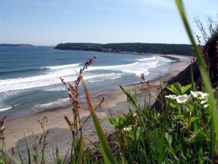 Playa de Hirtle
