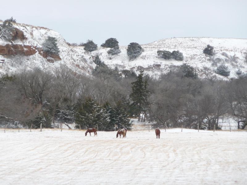 Invierno vista desde el porche