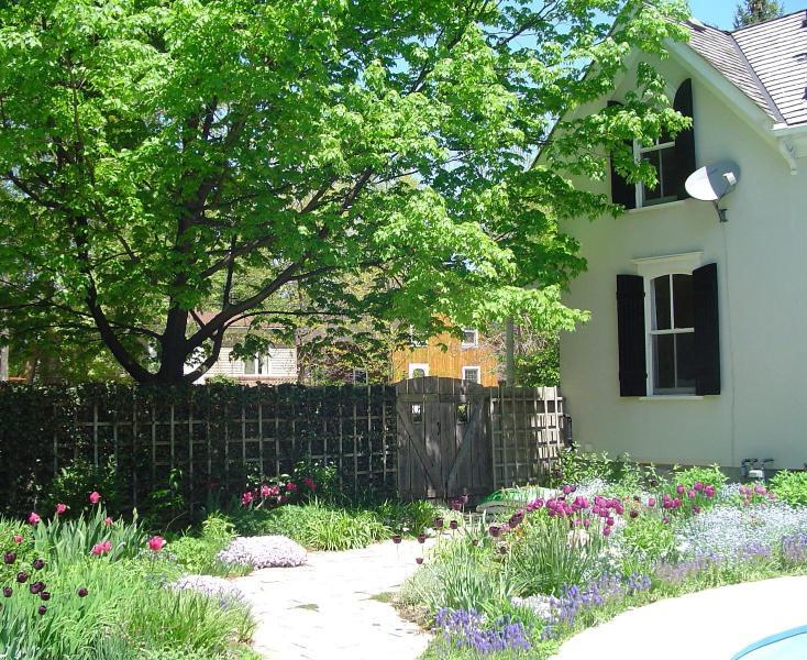 The perenniel garden