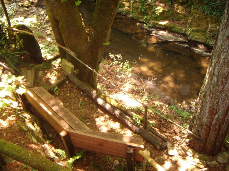 Creek Observation Bench