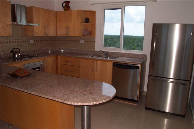 Volledig uitgeruste keuken, countertops van het graniet met uitzicht op de Oceaan en jungle