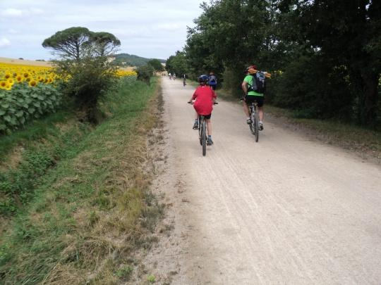 Cycling to Lautrec