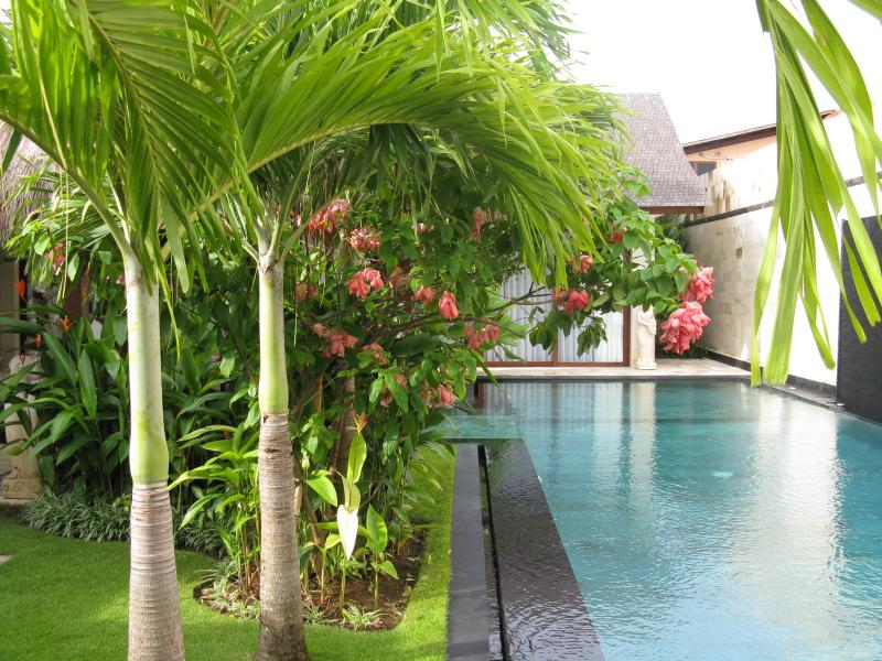 SPARKLING, SPACIOUS, SAFE - Villa Samsara - DISCOUNTED! Ask us for great prices, location de vacances à Canggu