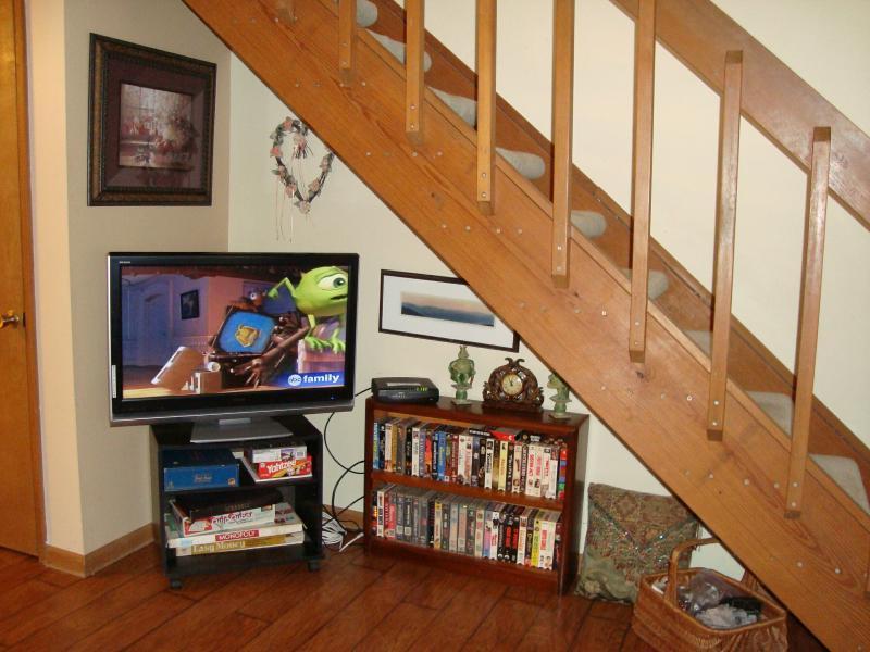 Salón HDTV con DVD incorporado; Biblioteca de gran película