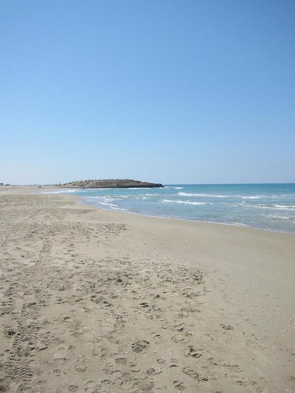 nearest beach in Neve Yam