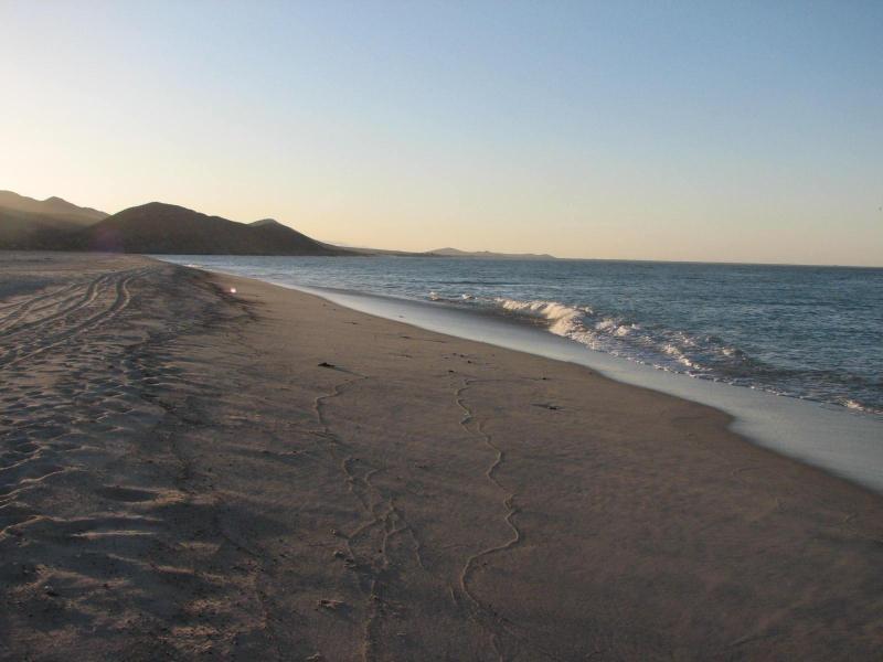 Guardando a nord di fronte alla spiaggia mare di Cortez