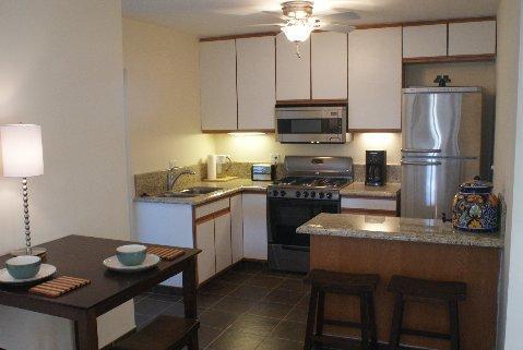New Kitchen with Microwave, Fridge, Range, toaster, blender, coffee maker etc.