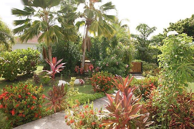Hibiscus Retreat - 2 Cottages in beautiful tropical garden, alquiler de vacaciones en Saint John Parish
