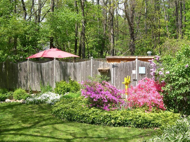 Sherwood Forest Garden