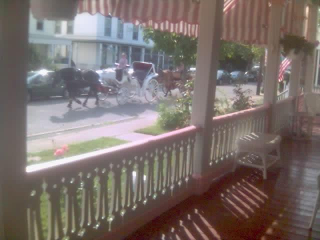Horse and Buggy passing by the apartments daily