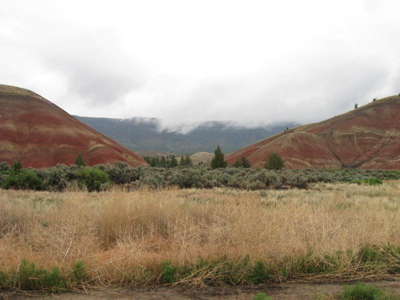 Part of the Famous Painted Hills