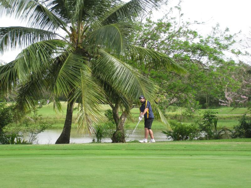 Golfing at Plantation- three championship courses to enjoy. Dome with ocean views.