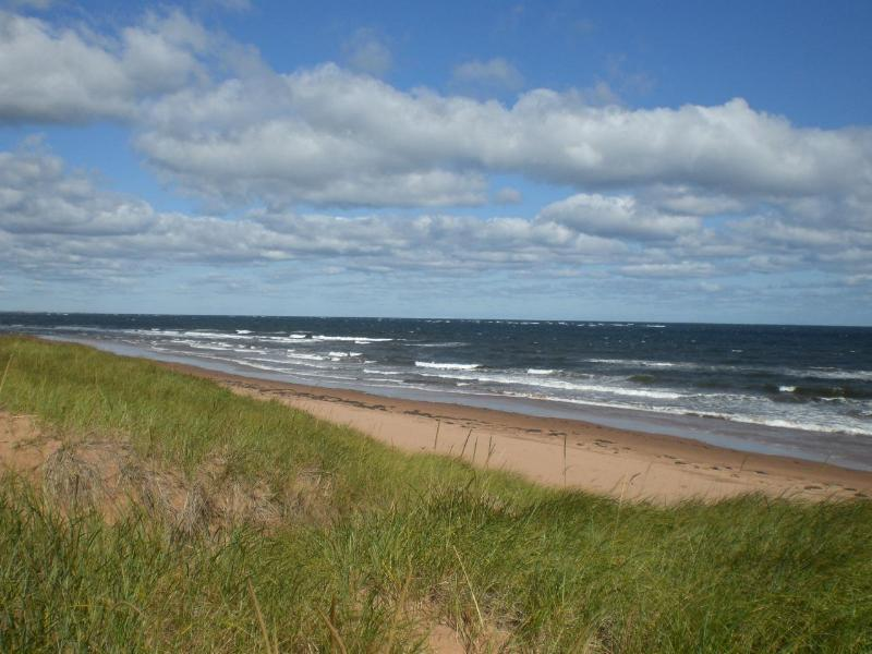 Beautiful North Shore