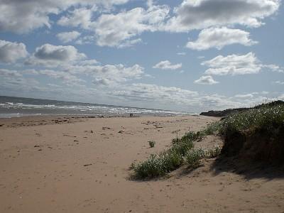 World Renowned White Sand Beaches