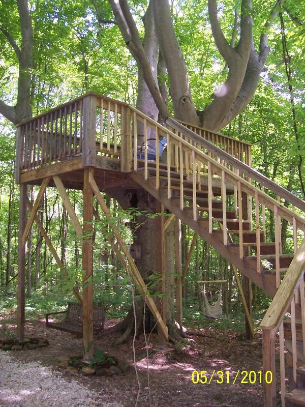 tree house with swings