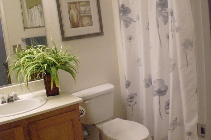 A second full bathroom, tub/shower