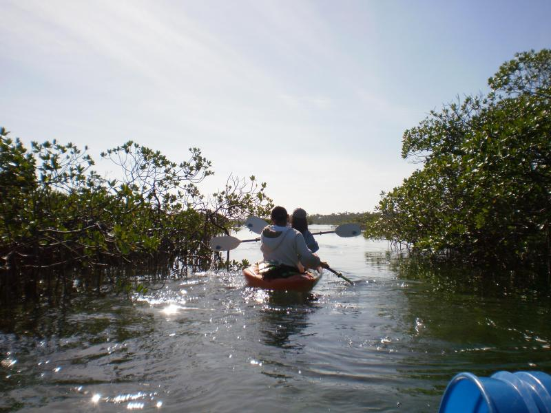 Kayaking in the shallows