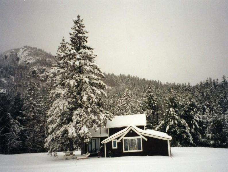 Ausable cottage in Winter