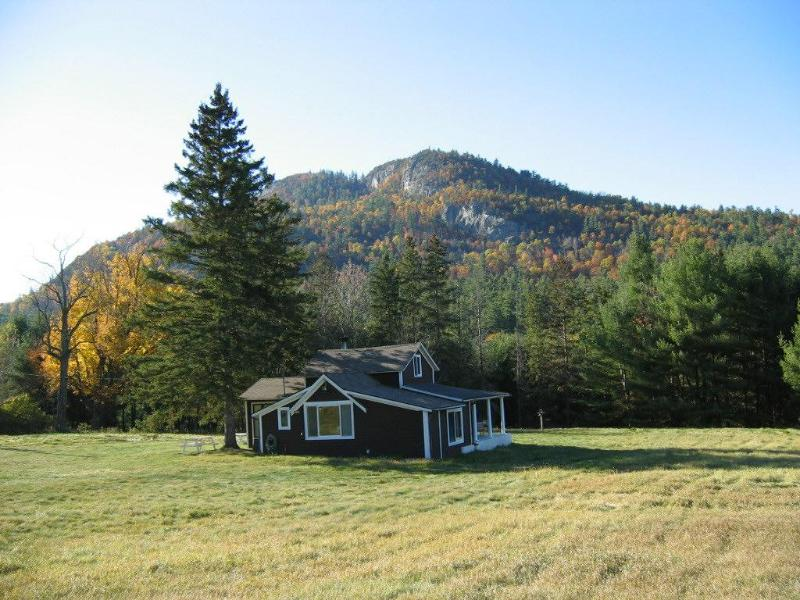 Ausable Cottage in Summer