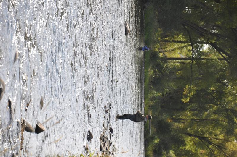 Fly Fishing the Colorado