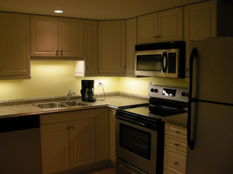 Kitchen in the lower unit, with brand new appliances.