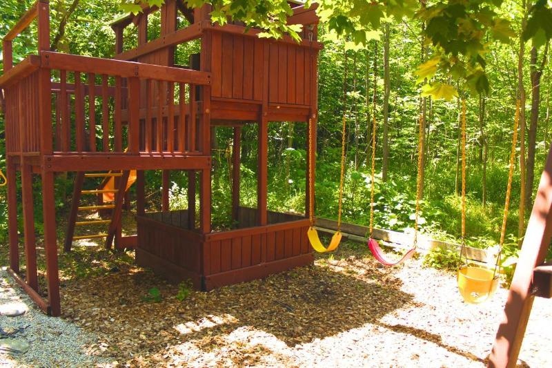 Jungle Gym in backyard