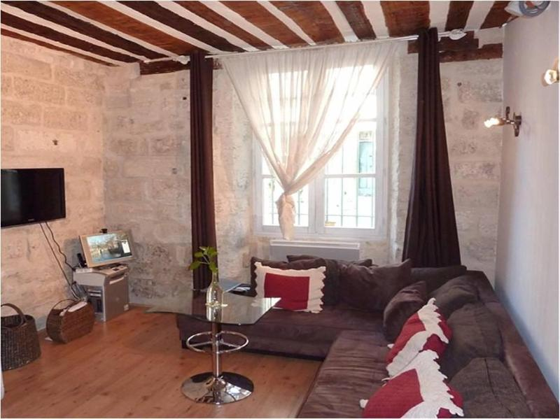 Charming & cozy apartment in the heart of Avignon, alquiler de vacaciones en Aviñón