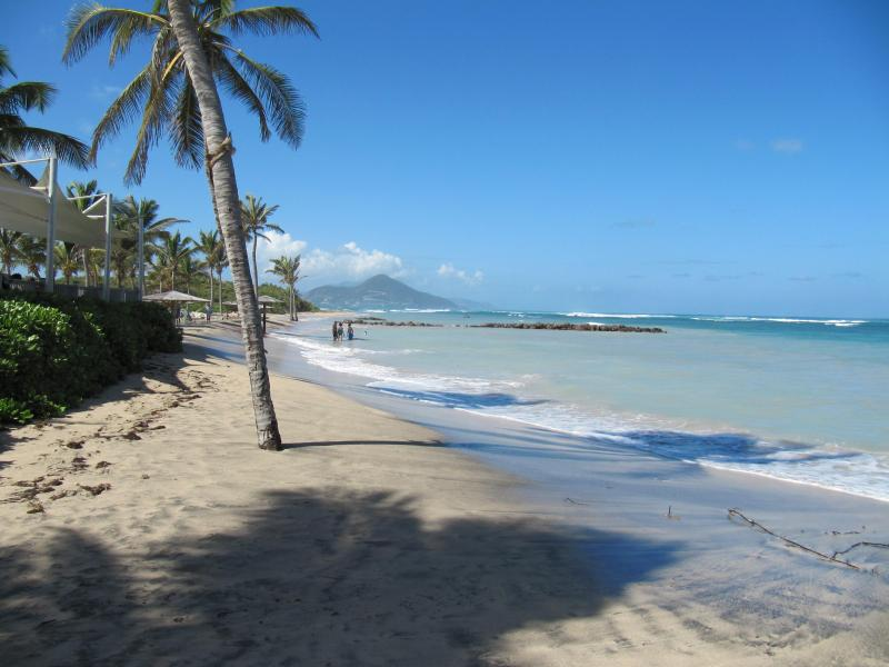 Spacious house close to the best beaches on unspoilt Nevis in the Caribbean, vacation rental in Nevis