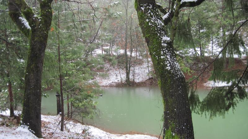 Seasonal Pond and Dock in the Winter
