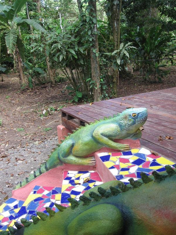 Iguana welcomes you