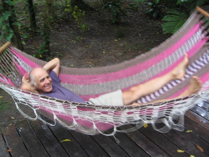 Swing in hammocks