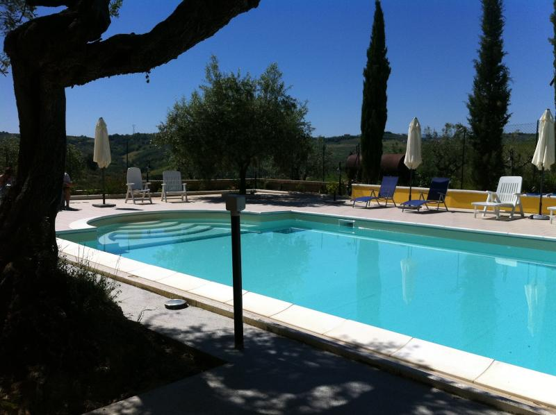 12m Swimming Pool for Guests