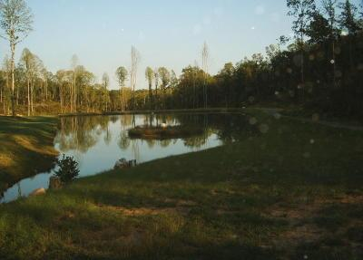 private fishing pond