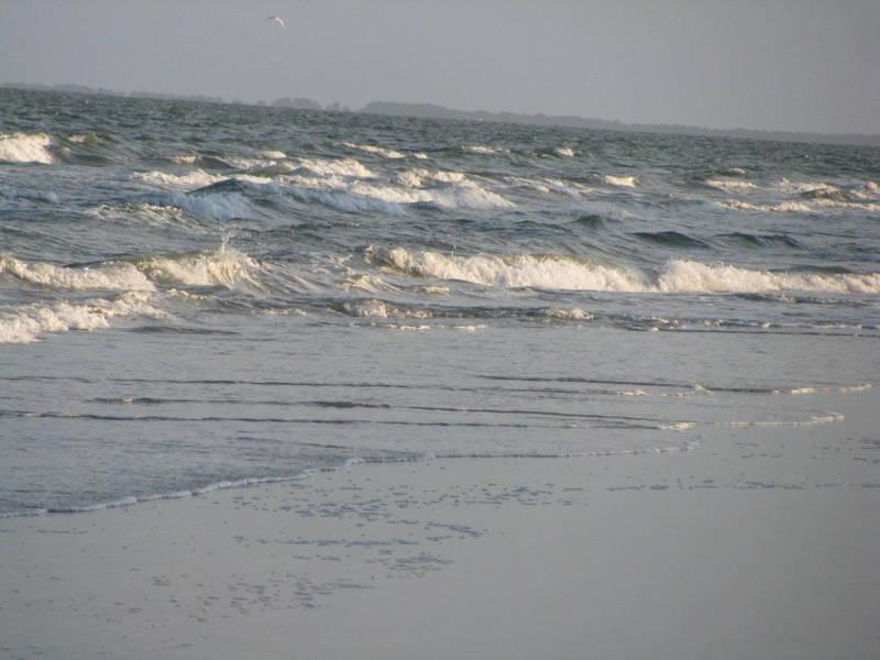Folly Field is one of the widest beaches on the Island